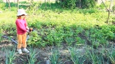 spása : Little girl is watering garden and bed. Orchard irrigation. Child watering beds on garden in hot summer day. Little girl watering plants outside