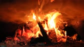 alight : Fire wood brighly burning in furnace. Firewood burn in rural oven. Burning firewood in fireplace closeup. Fire and flames. Close up of burning fire wood in fireplace Stock Footage