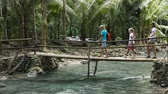 travel : Family walking on bridge in mountain forest Wideo