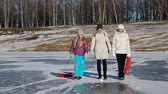 polar regions : Mother and daughters walking on a frozen lake.Family walking on the pure ice of a frozen lake.Outdoor winter fun for family.nice winter scene Stock Footage