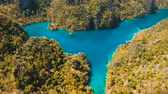 busuanga : Aerial view:Mountain Kayangan lake,on a tropical island with blue water. Lake in the mountains covered with tropical forest on the island Coron, Palawan, Philippines. 4K video, Travel concept, Aerial footage.