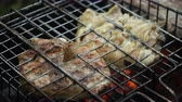 bonfile : Barbecue with delicious grilled meat on the grill.Barbecue meat is fried grill grate.Grilled meats outdoors.Barbeque on the grill Stok Video
