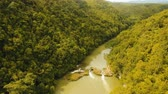 овраг : Aerial view, River in the rainforest among the jungle Tropical Loboc river in the rain forest in Asia. Mountain river flows through green forest. Philippines, Bohol. 4K video. Aerial footage. Landscape.