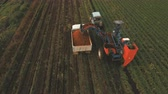 mechanized : Mechanized carrot harvesting.erial view.Machine harvesting carrots moves across the field and loads the carrot truck.Harvest carrots combine and load it into the truck. 4K video,4K. Stock Footage