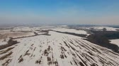 intocada : The field covered with snow in a winter season. Aerial view: Winter landscape countryside, field. Feld covered with frost snow. Aerial footage, 4K video.