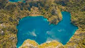 busuanga : Aerial view: Mountain Barracuda lake, on tropical island with blue water. Lake in the mountains covered with tropical forest on the island Coron, Palawan, Philippines. 4K video, Travel concept, Aerial footage.