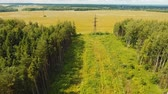 pólus : Power pylons and high voltage lines in an agricultural landscape. Aerial view row of high-voltage masts in the field. Electricity transmission power lines. Aerial footage.