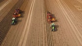 farming machinery : Farm machinery harvesting potatoes. Farmer field with a potato crop. 4K, aerial footage.