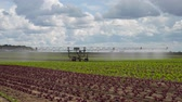 farming equipment : Aerial view: Crop Irrigation using the center pivot sprinkler system. An irrigation pivot watering salad, lettuce field. Irrigation system watering farm field, 4K.