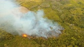 ciepło : Aerial view forest fire on the slopes of hills and mountains. Forest and tropical jungle deforestation for human food farming and export. large flames from forest fire. Using fire to destroy natural habitat and causing large scale environmental damage in  Wideo