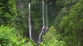 córrego : Waterfall in green rainforest. Triple waterfall Sekumpul in the mountain jungle. Bali,Indonesia. Travel concept.