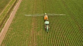plant fertilizer : Aerial view tractor spraying the chemicals on the large green field. Spraying the herbicides on the farm land. Treatment of crops against weeds. 4K, aerial footage.
