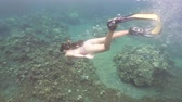 jovens : Young girl in a mask and a tube dives under the water. Girl snorkelling underwater. Tourist having fun diving in crystalline blue water, Happy tourist on vacation.