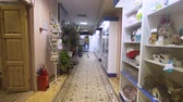 pharmaceutics : Pharmacy store with medicines and pet products in a veterinary clinic. Drugstore and healthcare interior. Stock Footage