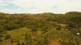 jeolojik : Amazingly shaped Chocolate hills on sunny day on Bohol island, Philippines. Aerial view Chocolate Hills in Bohol, Philippines are earth mounds scattered all over the town of Carmen. 4K video. Travel concept. Aerial footage. Stok Video