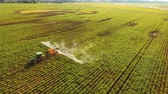 postřikovačů : Aerial view tractor spraying the chemicals on the large green field. Spraying the herbicides on the farm land. Treatment of crops against weeds. 4K, aerial footage.