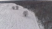 dondurucu : Aerial view: Winter landscape countryside with snow, forest, field, road. Feld, forest, trees covered with frost snow, Aerial footage. Winter country landscape Stok Video