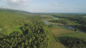 estuary : Aerial view river passing through farmlands and rice terraces. Philippines, Luzon. Tropical landscape with agricultural land near mountains and river flowing into sea.