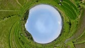 ryż : little planet view rice fields in the countryside. aerial view rice terrace, agricultural land Aerial footage.