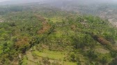 vidéki táj : mountain landscape slopes mountains covered with green tropical forest. Jawa, Indonesia. aerial view mountain forest with large trees and green grass.