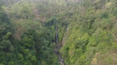 Бали : waterfall in green rainforest. Aerial view triple tropical waterfall Sekumpul in mountain jungle. Bali,Indonesia. Travel concept. Aerial footage.