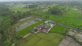 mecset : mosque in middle rice fields in Indonesia. aerial view farmland with rice terrace agricultural crops in rural areas Java Indonesia Aerial footage.
