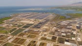 сельскохозяйственных животных : shrimp farm, prawn farming with with aerator pump oxygenation water near ocean. aerial view fish farm with ponds growing fish and shrimp and other seafood. Fish hatchery pond aerial view aquaculture business exported international market. java, indonesia Стоковые видеозаписи