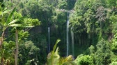 лес : waterfall in green rainforest. triple tropical waterfall Sekumpul in mountain jungle. Bali,Indonesia. Travel concept. Aerial footage.