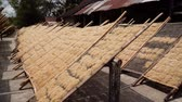 seco : noodle drying in sun at noodle factory in indonesia Bantul, Yogyakarta, Indonesia