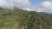 tepeleri : Aerial view mountains covered forest, trees in clouds. Cordillera region. Luzon, Philippines. Slopes of mountains with evergreen vegetation. Mountainous tropical landscape.