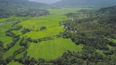 vale : Mountain valley with village, farmland, rice fields. Aerial view mountains with green tropical rainforest, trees, jungle with blue sky. Philippines, Luzon. Vídeos