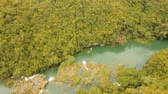ロープ : aerial view people using zipline attraction over river Loboc. People doing zip line Bohol, Philippines Travel concept. Aerial footage. 動画素材