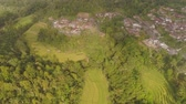 ファームハウス : town among rice fields and terraces in Asia. aerial view farmland with rice terrace agricultural crops in countryside Indonesia, Bali.