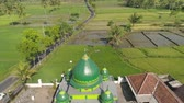 iszlám : mosque in middle rice fields in Indonesia. aerial view farmland with rice terrace agricultural crops in rural areas Java Indonesia Aerial footage.