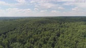 ladin : Aerial view green forest, treetops, forest area. Pine, spruce forest from above. Flight over mixed forest on a sunny summer day