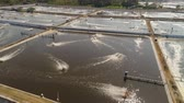 rybaření : shrimp farm, prawn farming with with aerator pump oxygenation water near ocean. aerial view fish farm with ponds growing fish and shrimp and other seafood. Fish hatchery pond aerial view aquaculture business exported international market. java, indonesia Dostupné videozáznamy