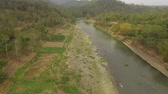 пейзаж : river in asia among palm trees, farmland and jungle. aerial view river in tropics flowing among farmlands with growing crops, tropical forest. rural landscape in Asia farmlands, fields with crops, trees