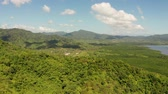 肥沃 : Aerial drone of Mountain range covered with dense green rainforest. Mountain jungle, Palawan, Philippines. 動画素材