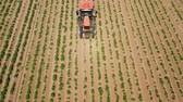 agronomia : Spraying with pesticides and herbicides crops aerial view. Tractor with pesticide fungicide insecticide sprayer on farm land. Stock Footage