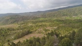 çiftçilik : rural landscape mountains with farmlands, village, fields with crops, trees. Aerial view farm lands on mountainside. tropical landscape Bali, Indonesia. Stok Video