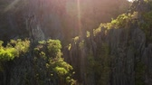 dusk forest : Sun rays on mountain cliffs covered by trees. tropical landscape. Dramatic sun rays hitting the mountain cliff. Sunset in mountain.