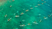 кит : Aerial view of tourists snorkeling and watch whale sharks in turquoise water. Summer and travel vacation concept. Oslob, Philippines, Cebu Island. Стоковые видеозаписи