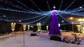 parques : Christmas tree decorated with colorful illumination. city park with winter night illumination
