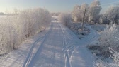pole : aerial view winter landscape with road and trees covered snow. winter in countryside