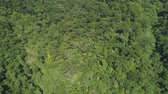 valle : Aerial view of mountains with green forest, trees, jungle. Slopes of mountains with tropical rainforest. Philippines, Luzon. Tropical landscape in Asia. Archivo de Video