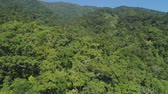 picos : Aerial view of mountains with green forest, trees, jungle with blue sky. Slopes of mountains with tropical rainforest. Philippines, Luzon. Tropical landscape in Asia.