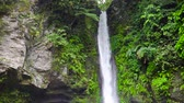течь : Waterfall in green rainforest. Tropical Tuasan Falls in mountain jungle. waterfall in the tropical forest. Camiguin, Philippines, Mindanao