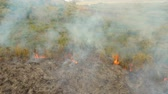 desastre : aerial footage forest fire on the slopes of hills and mountains, bush. Forest and tropical jungle deforestation for human food farming and export. large flames from forest fire. Using fire to destroy natural habitat and causing large scale environmental d