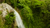 toupie : Beautiful waterfall in green forest, top view. Tropical Inambakan Falls in mountain jungle, Philippines, Cebu. Waterfall in the tropical forest. Vidéos Libres De Droits