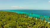 toupie : Aerial seascape: tropical islands in blue sea water with palm trees and beaches. Summer and travel vacation concept.